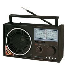 PORTABLE RADIO RS-8000 SLBT